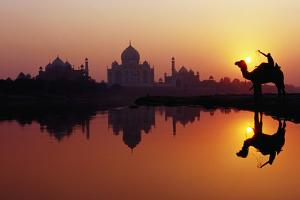 Taj Mahal & Silhouetted Camel & Reflection in Yamuna River at Sunset. by Richard I'Anson