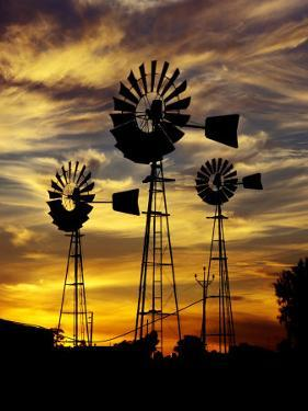 Windmills at Sunset in Penong, Australia by Richard I'Anson
