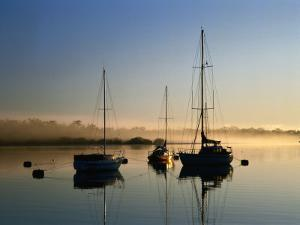 Moored Boats at Sunrise by Richard l'Anson