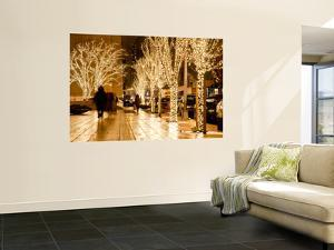 Trees Decorated with Lights at Night by Richard l'Anson