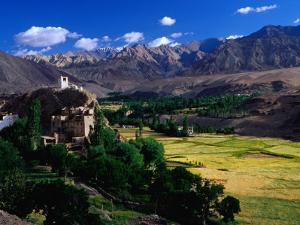 Village, Barley Fields and Ladakh Ranges, Ladakh by Richard l'Anson