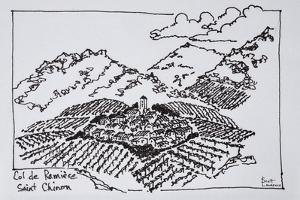 Vineyards in the Col de la Ramiere, Saint-Chinian, Languedoc region, Southern France by Richard Lawrence