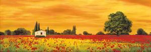 Field of Poppies by Richard Leblanc