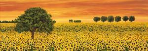 Field of Sunflowers by Richard Leblanc