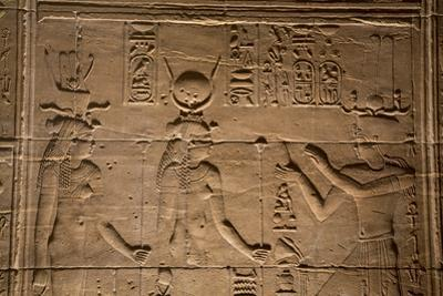 Decorative Wall Reliefs, Temple of Isis, Island of Philae, Aswan, Egypt, North Africa, Africa by Richard Maschmeyer