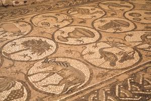 Floor Mosaics, Petra Church (Byzantine Church), Built Between the 5th and 7th Centuies Ad by Richard Maschmeyer
