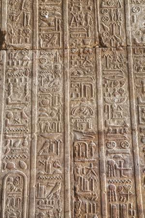 Hieroglyphs in the Hypostyle Hall, Temple of Horus, Edfu, Egypt, North Africa, Africa