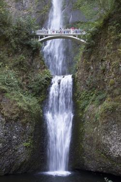 Multnomah Falls, East of Troutdale, Oregon, United States of America, North America by Richard Maschmeyer