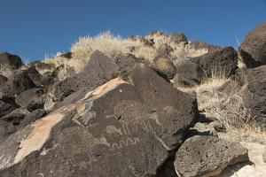 Petroglyph National Monument, New Mexico, United States of America, North America by Richard Maschmeyer