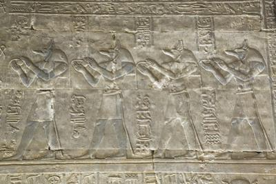Relief Depicting the God Anubis, Temple of Horus, Edfu, Egypt, North Africa, Africa