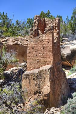 Ruins of Ancestral Puebloans, Square Tower, Dating from Between 900 Ad and 1200 Ad by Richard Maschmeyer