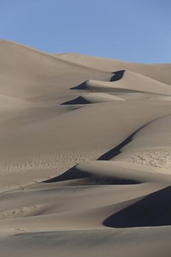 Sand Dunes, Great Sand Dunes National Park and Preserve, Colorado by Richard Maschmeyer