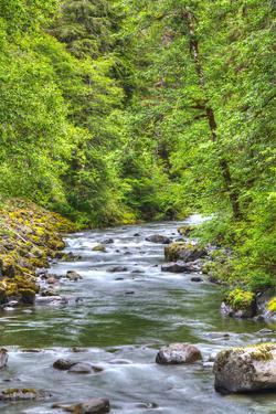 Sol Doc River, Olympic National Park, UNESCO World Heritage Site by Richard Maschmeyer