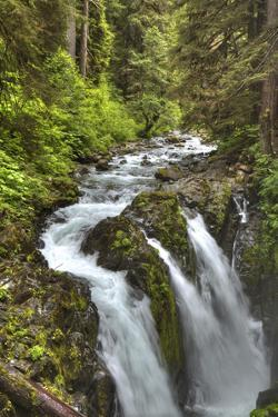 Sol Duc Falls, Olympic National Park, UNESCO World Heritage Site by Richard Maschmeyer