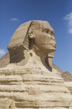Sphinx, the Giza Pyramids, Giza, Egypt, North Africa, Africa by Richard Maschmeyer