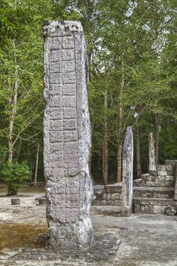 Stelae in Front of Structure 1, Calakmul Mayan Archaeological Site, Campeche, Mexico, North America by Richard Maschmeyer
