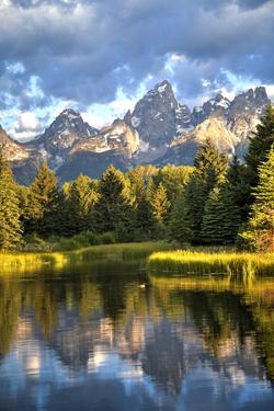 Water Reflection of the Teton Range by Richard Maschmeyer