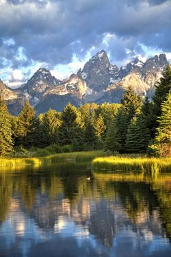 Water Reflection of the Teton Range by Richard Maschmeyer