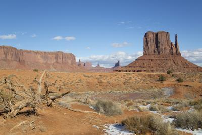 West Mitten Butte, Monument Valley Navajo Tribal Park, Utah, United States of America, North Americ by Richard Maschmeyer