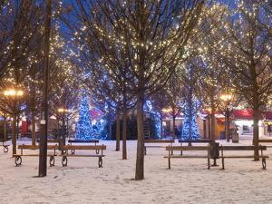 Christmas Decoration at Old Town Square's Park at Twilight, Stare Mesto, Prague, Czech Republic by Richard Nebesky