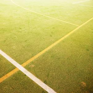 Astro Turf Pitch by Richard Newstead