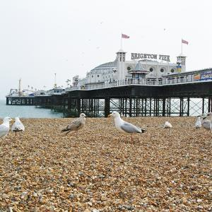 Brighton Pier by Richard Newstead