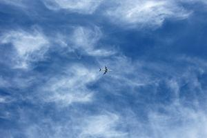 Flying Away by Richard Newstead