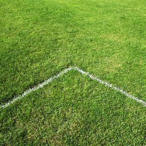Football Pitch Line by Richard Newstead