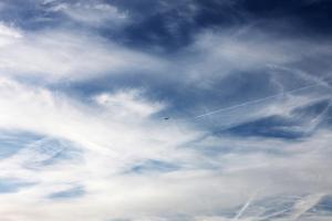 Plane in Flight by Richard Newstead