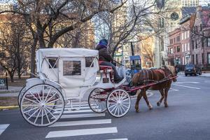 A Horse Drawn Carriage Travels Along Streets Near Chicago's Loop Area by Richard Nowitz