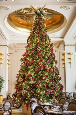 Christmas Tree in Lobby of a Hotel by Richard Nowitz