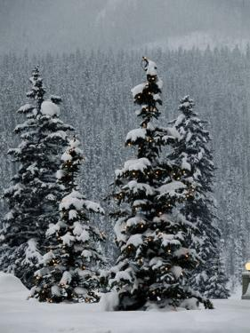 Fresh Snowfall at the Chateau Lake Louise by Richard Nowitz