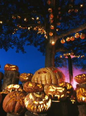 Grinning Lit Jack-O-Lanterns Surrounding and Filling a Tree by Richard Nowitz