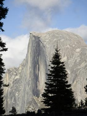 Half Dome in Yosemite National Park by Richard Nowitz