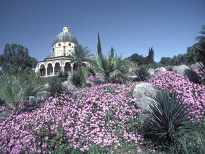 Mount of Beatitudes, Where Jesus Gave the Sermon on the Mount by Richard Nowitz
