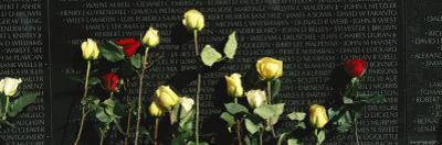 Roses are Left at the Vietnam Veterans Memorial by Richard Nowitz