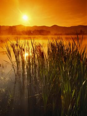 Sunrise over a Misty Pond and the Presidential Mountains by Richard Nowitz