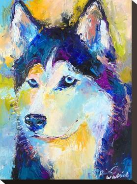 Husky by Richard Wallich