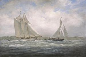 Two Classics: 'Aello Beta' and 'Marigold' Off the Isle of Wight, 2005 by Richard Willis