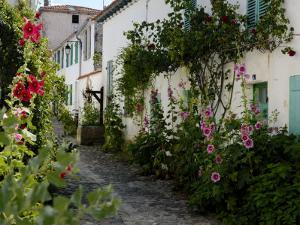 Hollyhocks Lining a Street with a Well, La Flotte, Ile De Re, Charente-Maritime, France, Europe by Richardson Peter