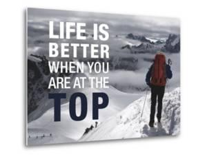 Life is Better at the Top by Richardson Peter