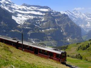 Train for Jungfraujoch, Kleine Scheidegg, Bernese Oberland, Swiss Alps, Switzerland, Europe by Richardson Peter