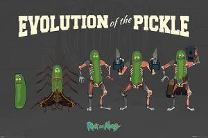 Rick and Morty - Evolution Of The Pickle