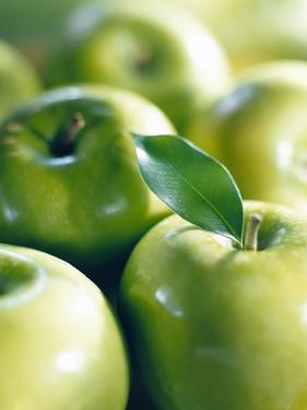 Bunch of Green Apples by Rick Barrentine