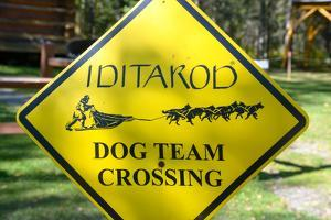Close-up of an Iditarod Crossing Sign, Alaska by Rick Daley