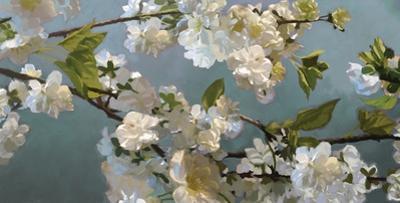 Blue Blossoms by Rick Novak