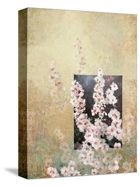 Cherry Blossoms 3 by Rick Novak