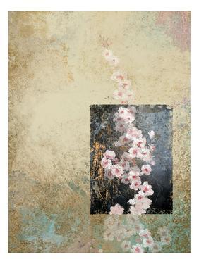 Cherry Blossoms 4 by Rick Novak