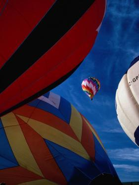 Hot Air Balloon Race, Calgary, Canada by Rick Rudnicki