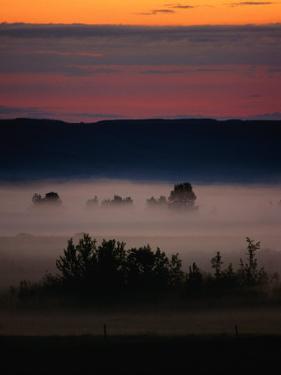 Mist Over Countryside, Calgary, Canada by Rick Rudnicki